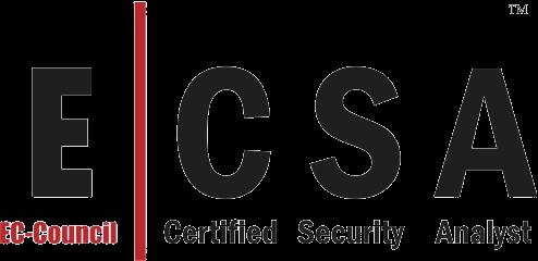 la securite informatique manager et assurer